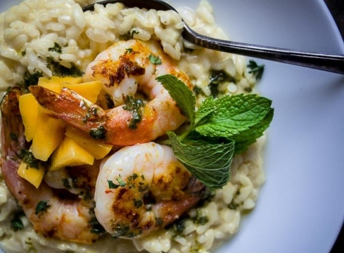 shrimp on top of risotto