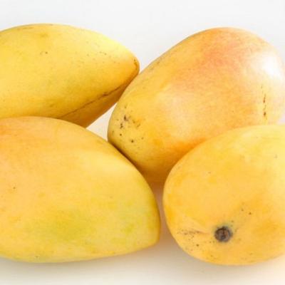 Mango Raita Recipe – Aakanksha: Desire for Wellness